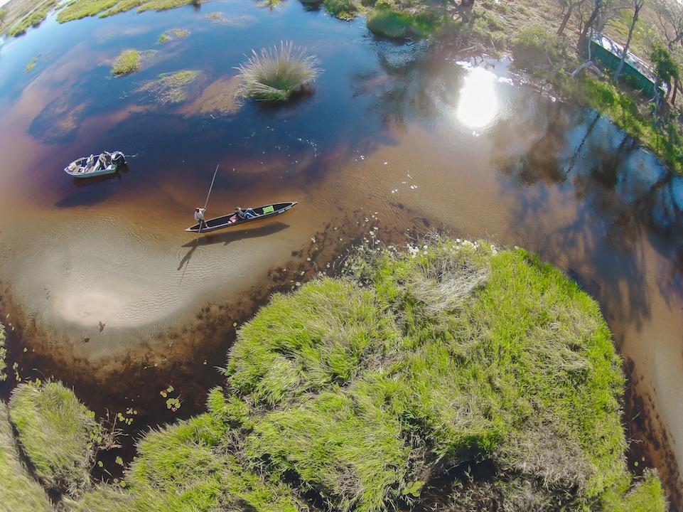 Okavango Delta Banner Photo