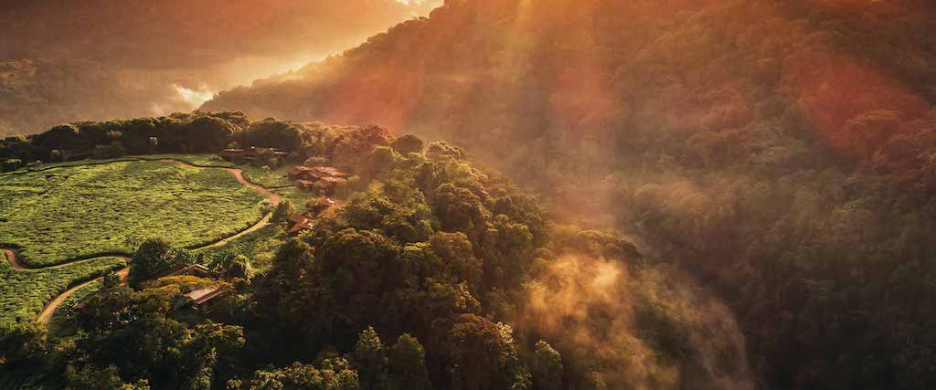 One&Only Nyungwe House Drone