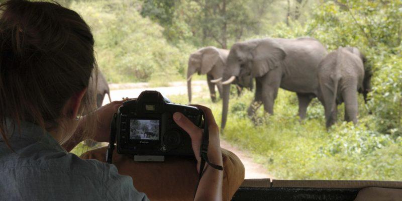 &Beyond Lake Manyara Tree Lodge Safari