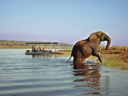 Chobe National Park Thumbnail