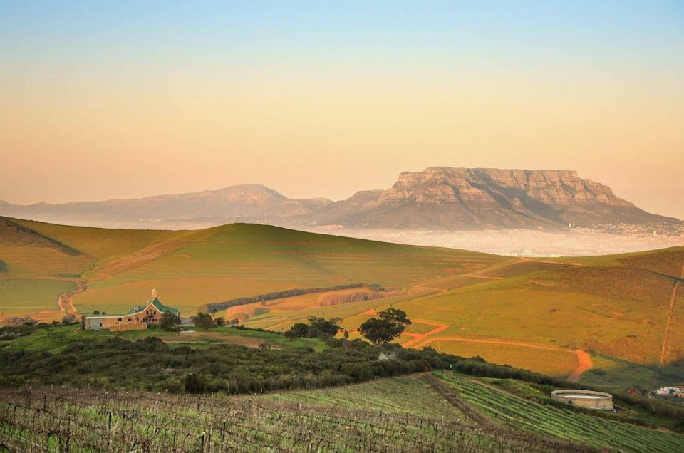 Gourmet experiences in South Africa's Winelands