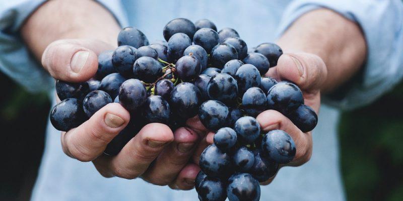 Grapes