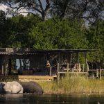 Little DumaTau Camp Elephant